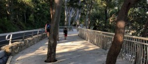 Park Road coastal boardwalk opens