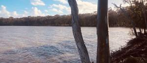 Discover peaceful Lake Weyba