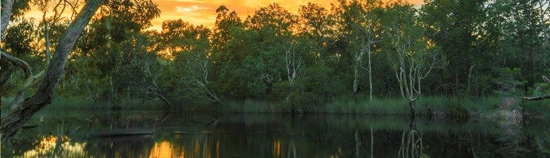 Noosa Everglades Discovery