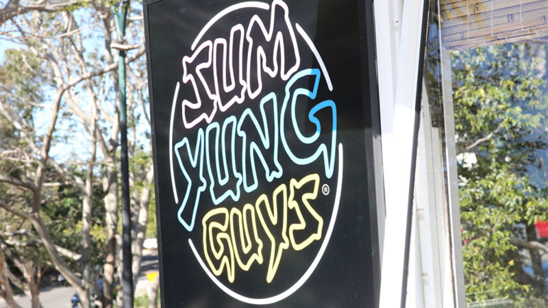 Meet the Sum Yung Guys