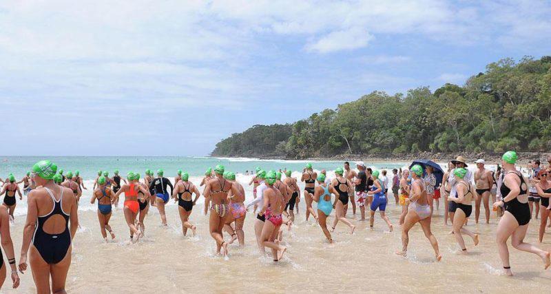 Noosa Summer Swim
