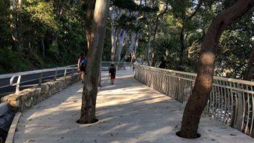 Park Road coastal boardwalk opens